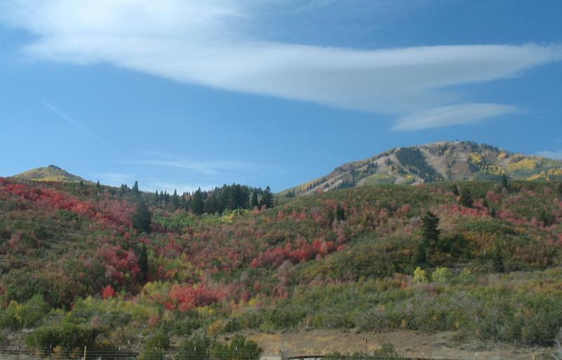 A Ride Through Provo Canyon To Springville Utah