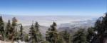 Took a ride on the Palm Springs Aerial Tramway